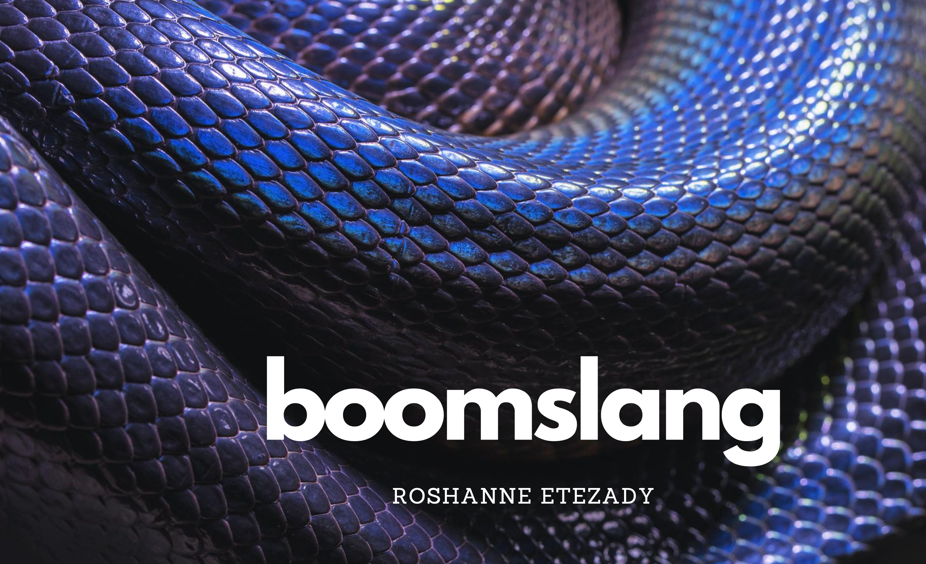 Boomslang by Roshanne Etezady