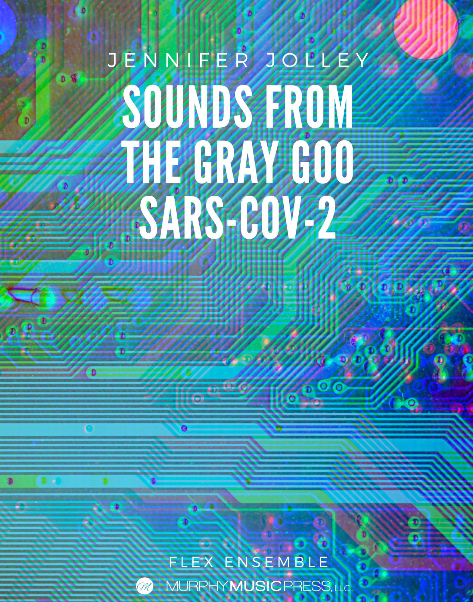 Sounds From The Gary Goo by Jennifer Jolley