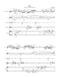 Trio For Alto Saxophone, Viola, And Percussion by Andrew Mead